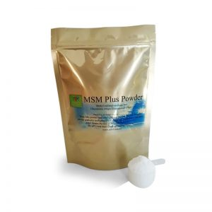 msm plus powder menthyl sulfonyl methane health within